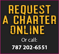 charter-box