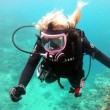 SCUBA Dive Charter